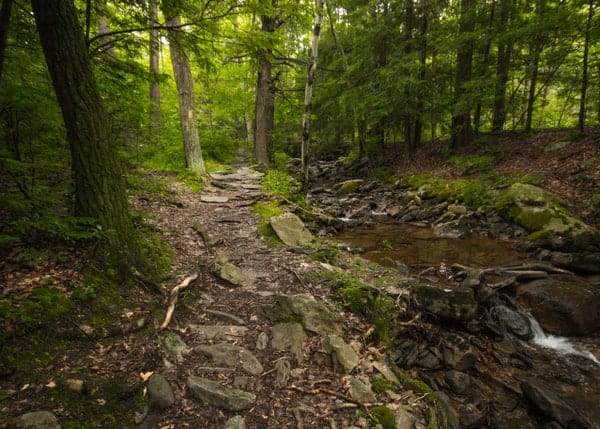 Hiking in Seven Tubs Nature Area in Luzerne County, PA