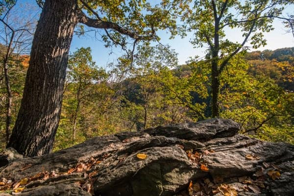 Free things to do in Philadelphia: Hike in Wissahickon Gorge.