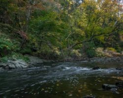 10 Fantastic Things to Do in Wissahickon Gorge in Philadelphia