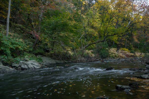 Things to do in Wissahickon Gorge in Philadelphia, Pennsylvania