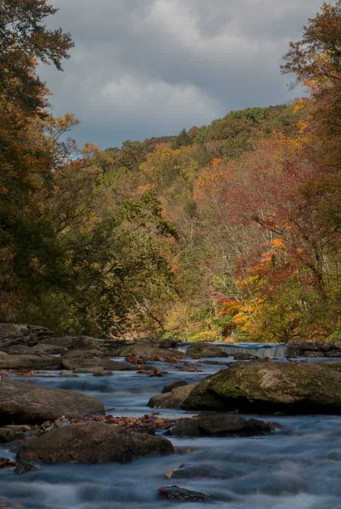 Wissahickon Gorge is a great spot to visit to see fall foliage in Philadelphia.