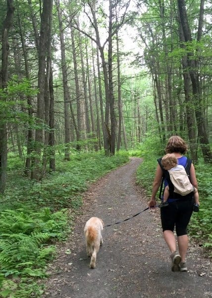 Hiking Hornbecks Trail in the Delaware Water Gap