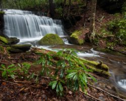 How to Get to Yost Run Falls and Kyler Fork Falls in Sproul State Forest