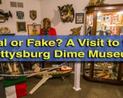 Real or Fake? A Visit to the Gettysburg Dime Museum
