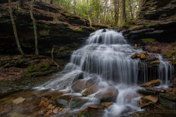 Waterfalls in Tioga County, Pennsylvania: Unnamed Waterfall Tioga State Forest
