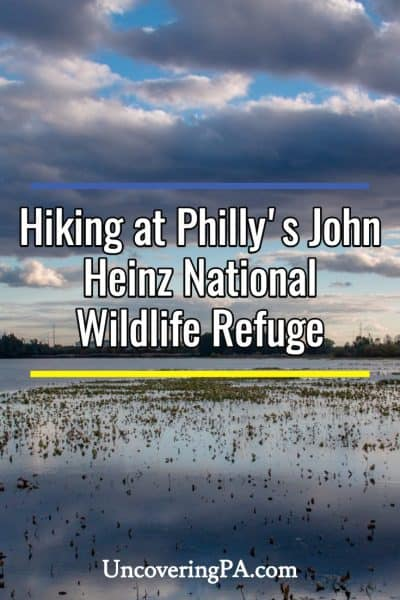 Exploring the scenic hiking trails at John Heinz National Wildlife Refuge in Philadelphia, Pennsylvania