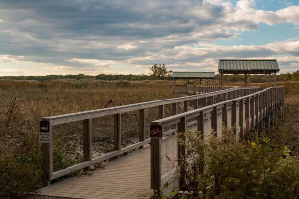Hiking in John Heinz National Wildlife Refuge is a great family-friendly attraction in Philadelphia