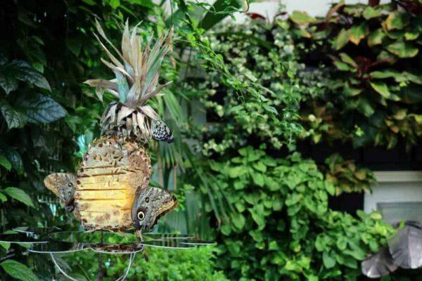 Butterfly Atrium in Hershey Gardens