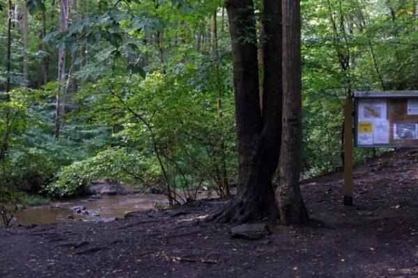 alternate entrace for Tucquan Glen Blue Trail West