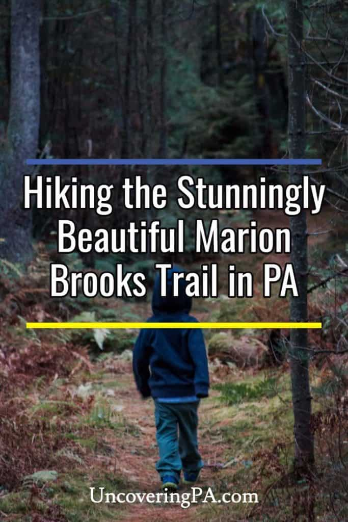 Hiking the Marion Brooks Trail in the Pennsylvania Wilds