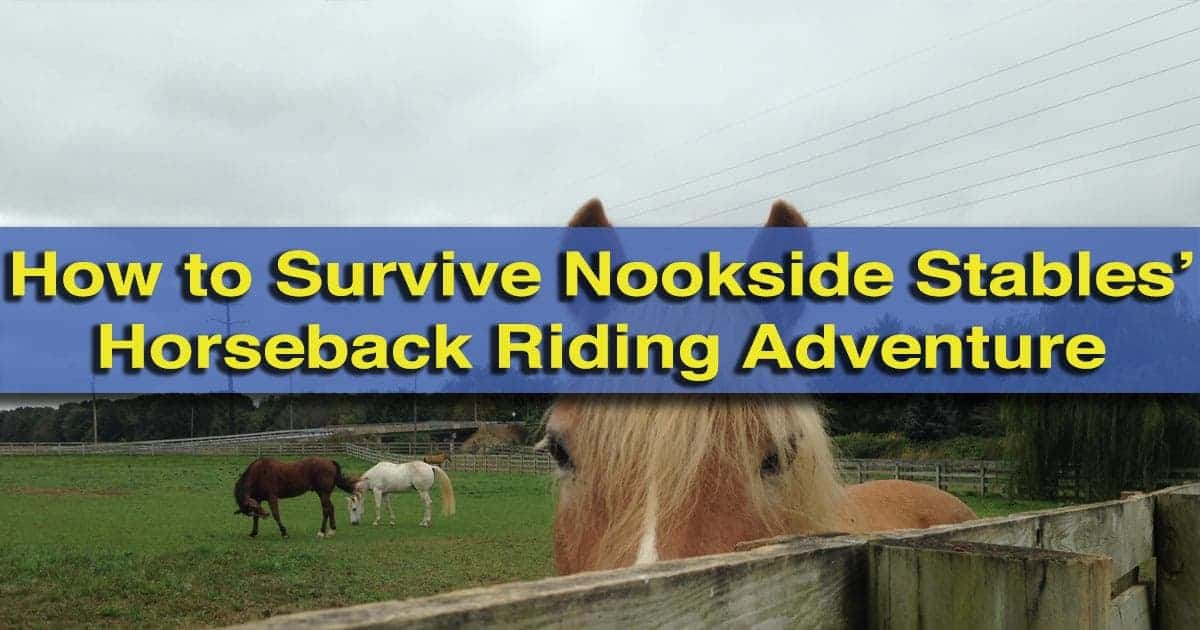 Nookside Stables Horseback Riding Adventure in Lancaster County, PA