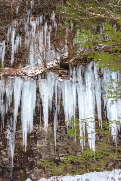 Icicles on the Falls Trail at Ricketts Glen State Park