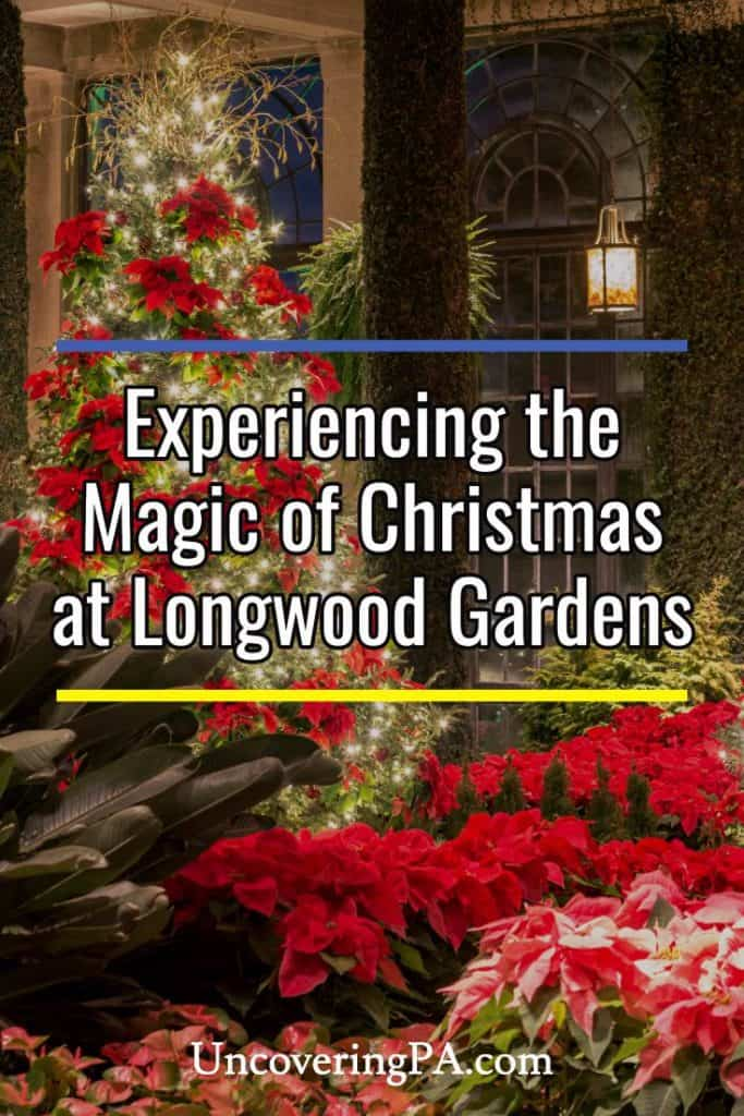 Experiencing the Magic of Christmas at Longwood Gardens in Kennett Square, Pennsylvania