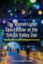 The Winter Light Spectacular at the Lehigh Valley Zoo in Pennsylvania