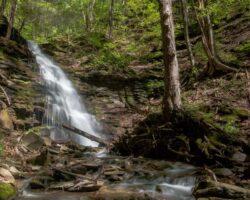 Pennsylvania Waterfalls: Water Tank Run Falls Along the Pine Creek Rail Trail
