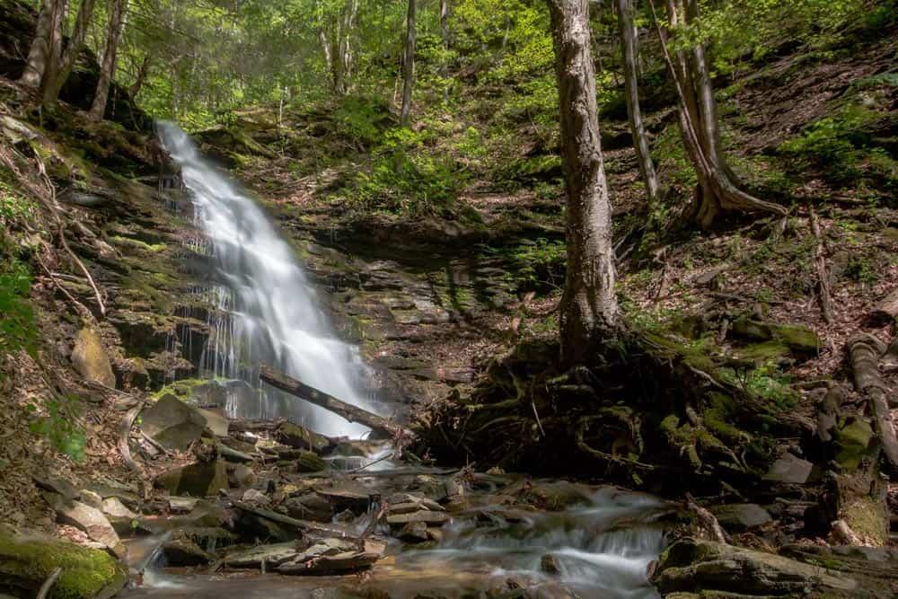 Water Tank Run Falls in Tioga County, Pennsylvania