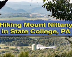 Everything You Need to Know for a Great Mount Nittany Hike