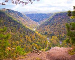 Experiencing the Beauty of the PA Grand Canyon by Hiking the Barbour Rock Trail