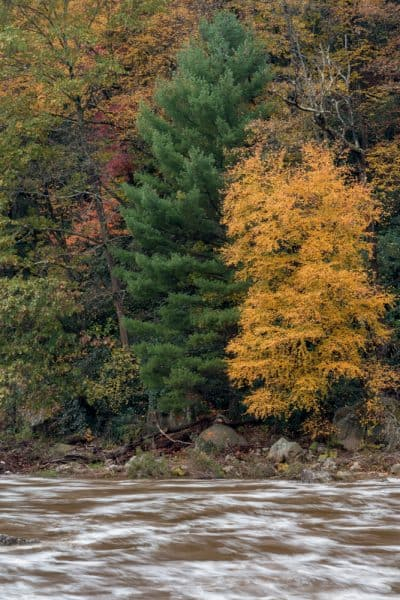 Places to see fall foliage in Pennsylvania: Ohiopyle State Park