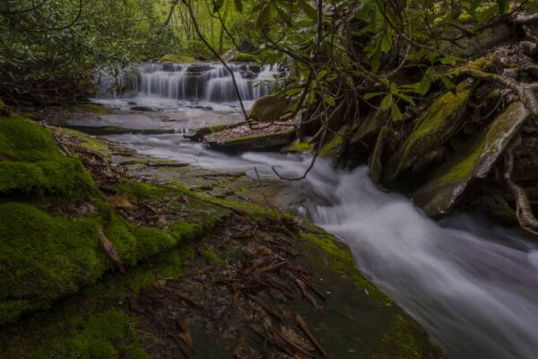 A stream in Ohiopyle State Park Photography Workshop
