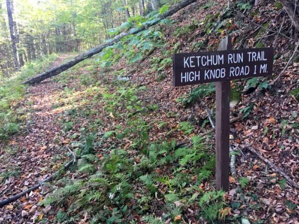Ketchum Run Trail in Loyalsock State Forest.