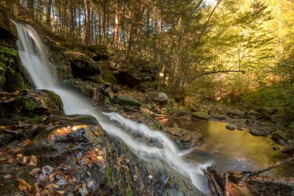 Lee Falls in Sullivan County, Pennsylvania