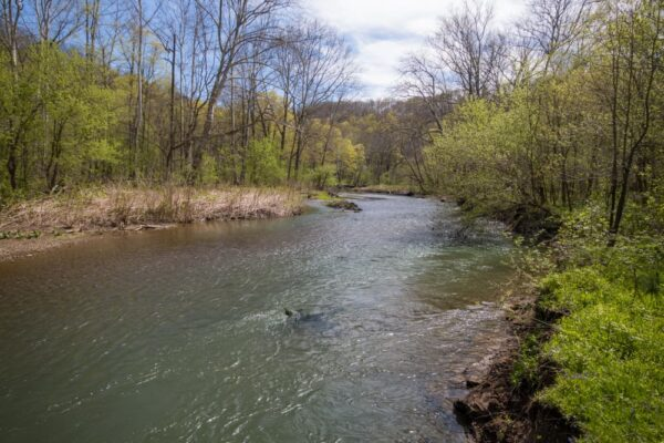 Raccoon Creek in the spring