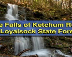Pennsylvania Waterfalls: Hiking to the Ketchum Run Gorge Waterfalls in Loyalsock State Forest