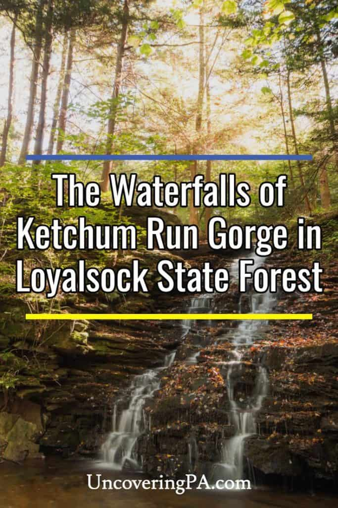 Ketchum Run Gorge Waterfalls in Loyalsock State Forest