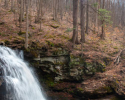 17 Things to Do in Worlds End State Park: Waterfalls, Vistas, and Where to Eat