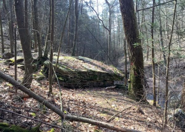 Hiking to Jarrett Falls in State Game Lands 53
