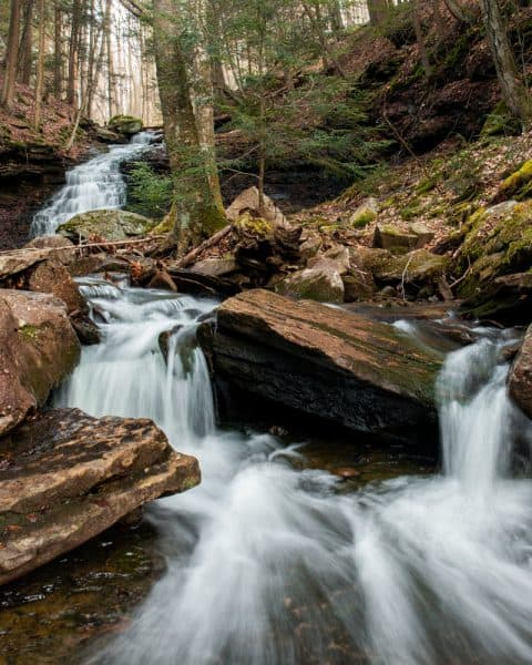 Mineral Springs Falls in Worlds End State Park