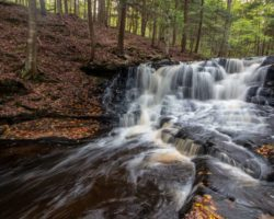 How to Get to Rusty Falls in Loyalsock State Forest