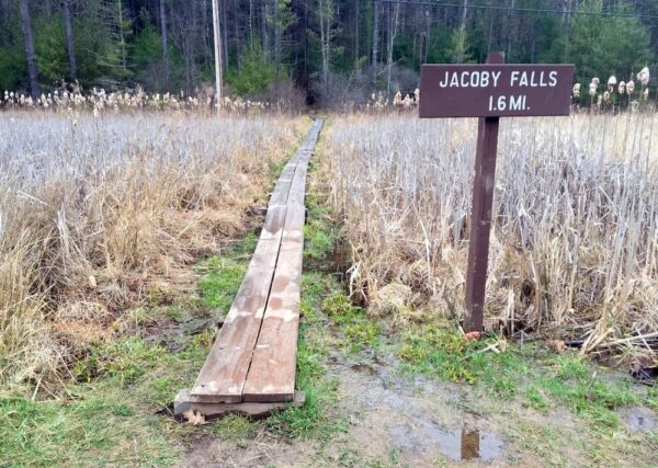 Trail to Jacoby Falls near Williamsport, PA