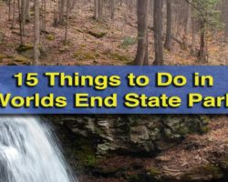 15 Things to Do in Worlds End State Park: Waterfalls, Vistas, and Where to Eat