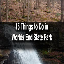 Things to do in Loyalsock State Forest and Worlds End State Park