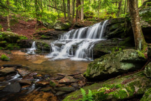 Pennsylvania Waterfalls: How to Get to Logan Falls in the Allegheny National Forest