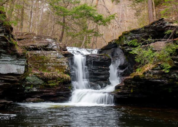 The Falls Trail at Ricketts Glen State Park is one of the best things to do in Wilkes-Barre, PA