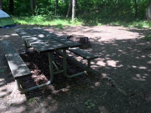 What does each campsite have at Ohiopyle State Park