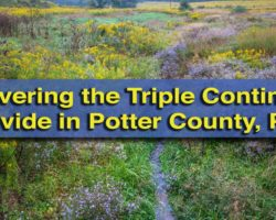 Uncovering the Triple Continental Divide in Potter County, Pennsylvania