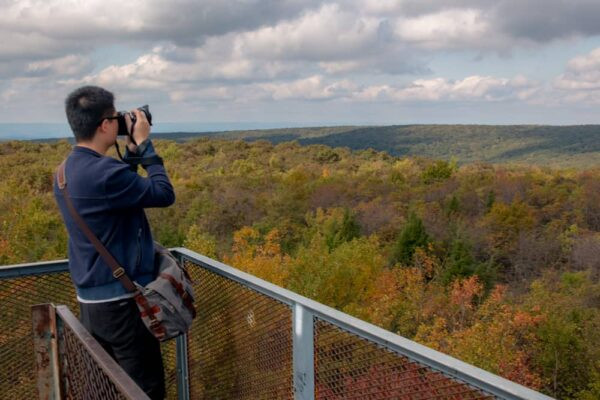 Fall foliage at PA's tallest point: Mount Davis