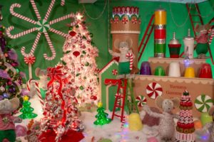 Kraynak's Christmas Display in Hermitage: Festive Joy for the Whole Family