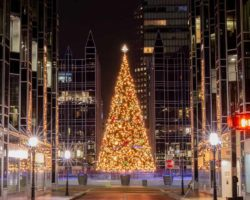 11 Great Spots to See Christmas Lights in Pittsburgh