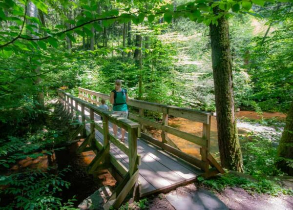 Hiking the Evergreen Trail is a great thing to do in Luzerne County, PA