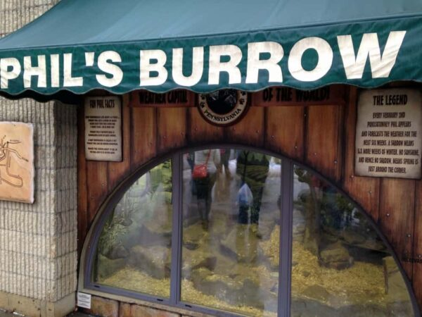 Phil's Burrow in Punxsutawney, PA