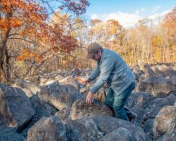 Visiting Bucks County's Other Ringing Rocks: Stony Garden in State Game Lands 157