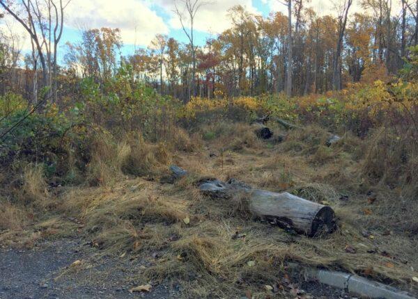 Trail to Stony Gardens in Upper Bucks County, PA