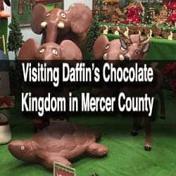 Daffin's Chocolates in Mercer