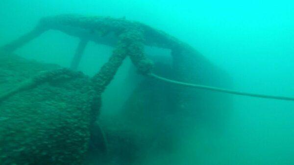 Things underwater at Dutch Springs Scuba Diving in Bethlehem, PA