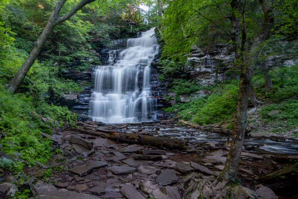 Falls Trail at Ricketts Glen State Park